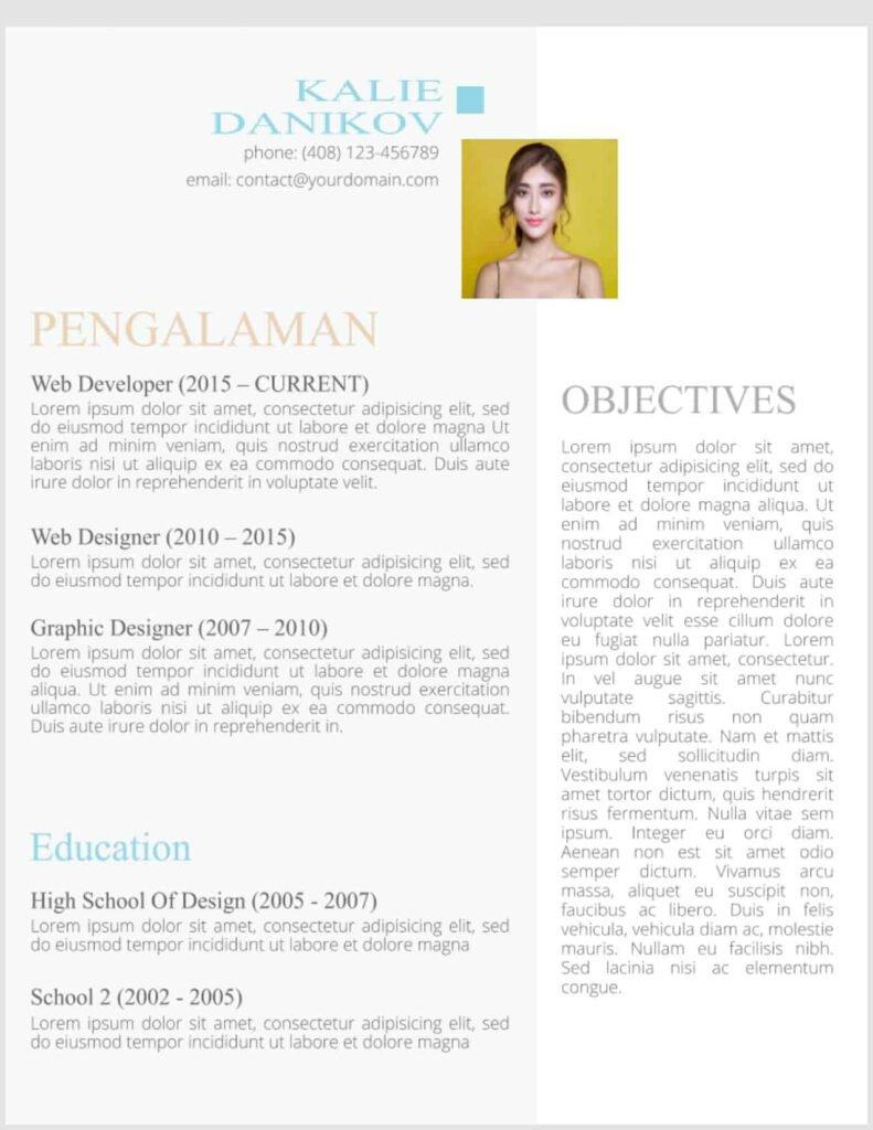 Curriculum-Vitae-UI-Designer