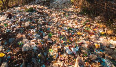 Apa itu Sampah Pengertian, Dampak, Jenis, dan Cara Penanganan Sampah